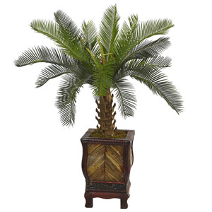 3 Ft. Cycas Tree in Wood Planter