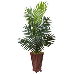 4.5 Ft. Kentia Palm Tree in Decorative Wood Planter