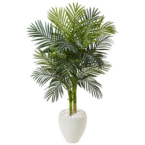 4.5 Ft. Golden Cane Palm Tree in White Oval Planter