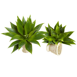 Green 17-Inch Agave Succulent Plant, Set of Two