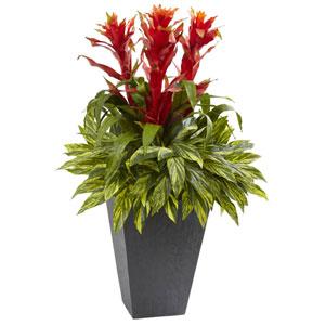 Tropical Bromeliad with Slate Planter