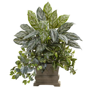 Green 28-Inch Mixed Silver Queen, Wandering Jew and Fittonia with Planter