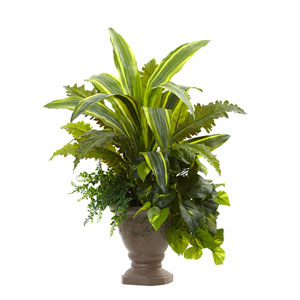 Green 25-Inch Mixed Yucca, Marginatum, Pothos and Bracken with Planter
