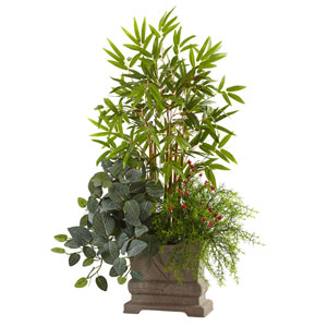 Green 38-Inch Mixed Mini Bamboo, Fittonia and Springeri with Planter