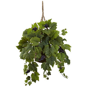 Grape Leaf Hanging Basket