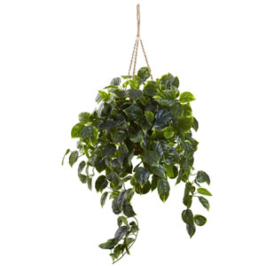 Green Pothos UV Resistant Hanging Basket