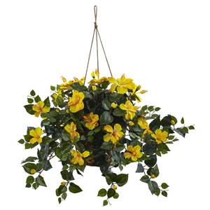 Yellow Hibiscus Hanging Basket
