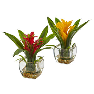 Bromeliad with Vase Arrangement, Set of 2