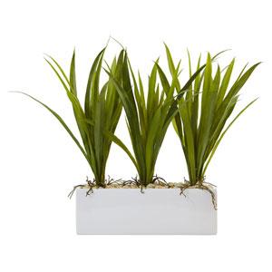 Grass in Rectangular Planter