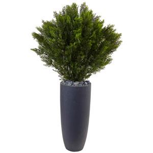 4 Ft. Cedar in Cylinder Planter