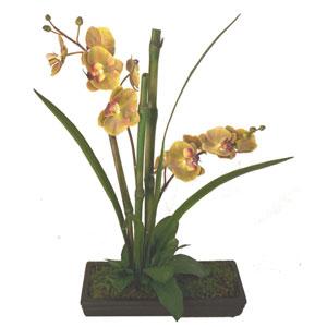 Orchids Faux Botanical Orchid Arrangement