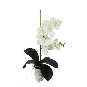 White Faux Orchid Arrangement
