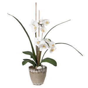 Orchids Faux Phalaenopsis in Planter