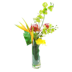 Faux Mixed Tropical Flowers in Cylinder Vase