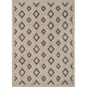 Andes Beige Rectangular: 7 Ft. 9 In. x 9 Ft. 9 In. Rug