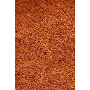 Luster Shag 01 Tangerine Rectangular: 8 ft. x 10 ft. Rug