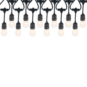 Black 12-Light Incadescent String Light