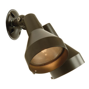 Bronze Two-Light Outdoor Flood Light