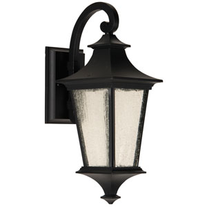 Argent Midnight One-Light Small LED Outdoor Wall Mount Lantern with Clear Seeded Glass