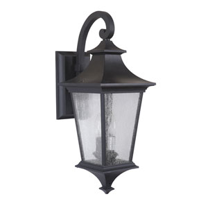 Argent Midnight One-Light Medium LED Outdoor Wall Mount Lantern with Clear Seeded Glass