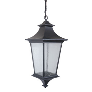 Argent Midnight One-Light Large LED Outdoor Pendant with Clear Seeded Glass