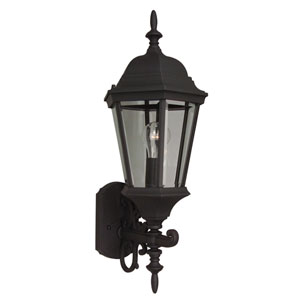 Straight Glass Matte Black One-Light 24-Inch Outdoor Wall Mount