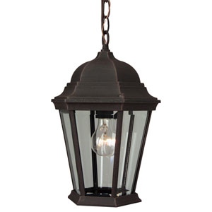 Straight Glass Rust One-Light Outdoor Pendant
