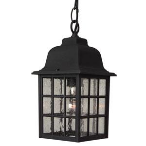 Grid Cage Matte Black Outdoor Pendant