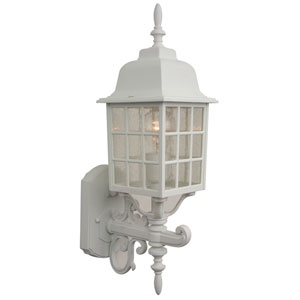Grid Cage Matte White Outdoor Wall Mount