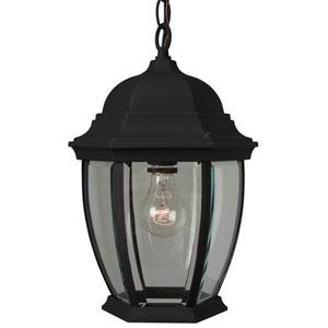 Cast Aluminum Black Outdoor Hanging Lantern