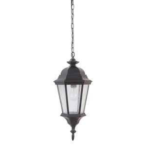 Chadwick Midnight One-Light Outdoor Pendant