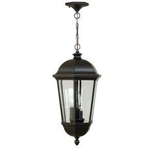 Britannia Medium Outdoor Hanging Lantern