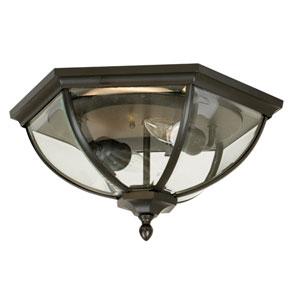 Britannia Outdoor Flush Ceiling Light
