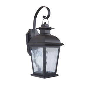 Branbury Oiled Bronze One-Light Small LED Outdoor Wall Mount Lantern with Clear Water Glass