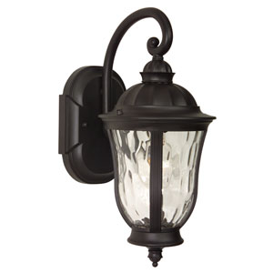 Frances Oiled Bronze One-Light Outdoor Wall Mount with Clear Hammered Glass