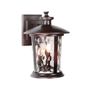 Summerhays Oiled Bronze Gilded One-Light Medium Outdoor Wall Mount Lantern