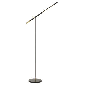 Virton Black and Antique Brass Integrated LED Floor lamp