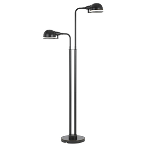 Dark Bronze Two-Light LED Floor Lamp