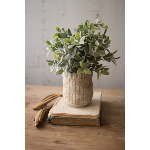 Green Artificial Sage with Criss Cross White Pot