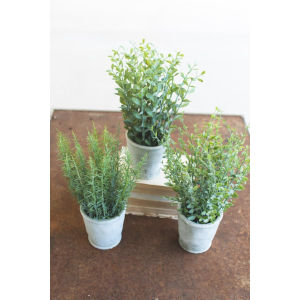 Green Artificial Herb in Cement Pot, Set of Three