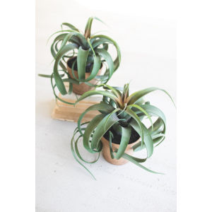 Green Artificial Airplant in Pot, Set of Two