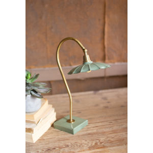 Goose Neck Antique Brass 18-Inch One-Light Table Lamp with Enamel Shade