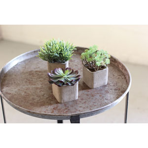 Small Artificial Succulents in Square Pots, Set of 3