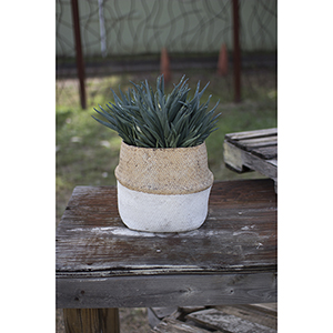 Woven Cement Planter - Natural And White