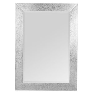 Keegan Silver Rectangular Mirror