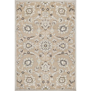 Lucia Beige and Gray Rectangular: 23-Inch x 45-Inch Rug