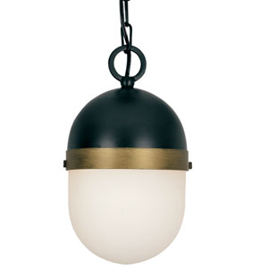 Capsule Matte Black and Textured Gold One-Light Outdoor Pendant