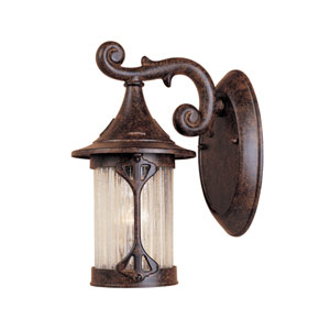Canyon Lake Chestnut One-Light Outdoor Wall Mount with Aged Crackle Optic Glass