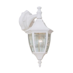 White One-Light Outdoor Wall Mount with Clear Glass