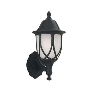 Capella Black One-Light Outdoor Wall Mount with Satin Crackled Glass